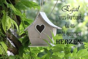 HerzenX